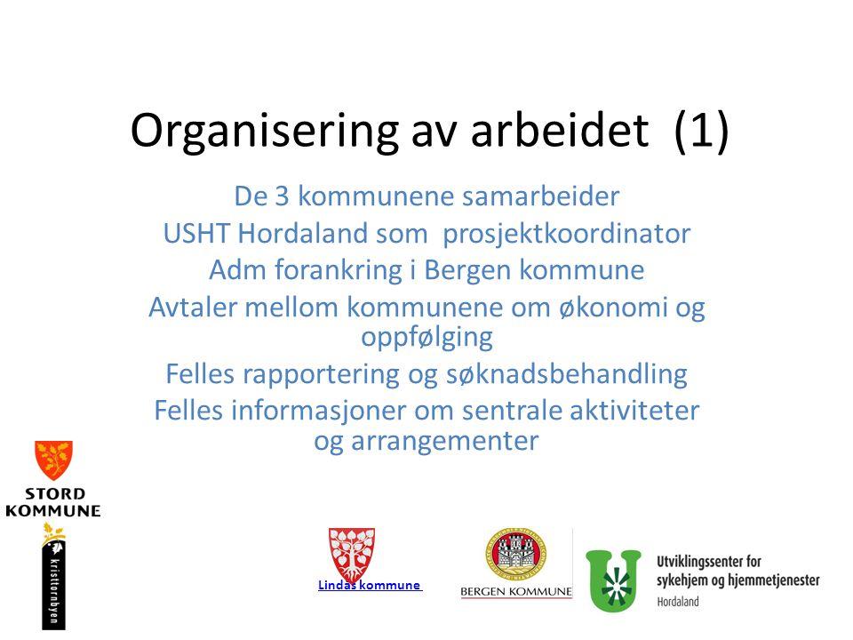 Organisering av arbeidet (2) Tilskudd til hver av kommunene fastsatt av Helsedir Regelmessige fellesmøter mellom de 3 kommunene Felles avtale om følgemed forskning (SINTEF/Hib) Egne programmer i hver av kommunene Være ressurskommuner i nedslagsfeltet Lindås kommune