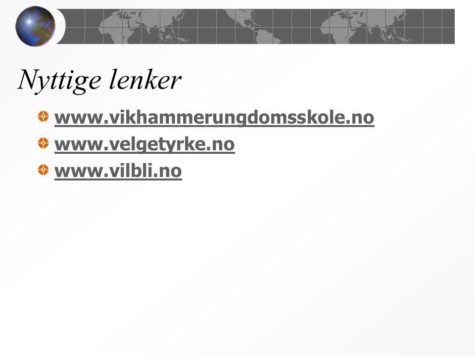 Nyttige lenker www.vikhammerungdomsskole.no www.velgetyrke.no www.vilbli.no