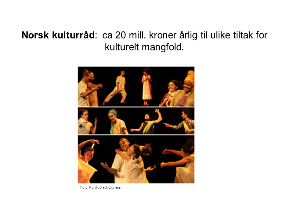 Norsk kulturråd: ca 20 mill. kroner årlig til ulike tiltak for kulturelt mangfold.