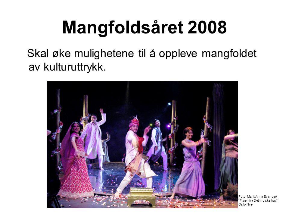 Mangfoldsåret 2008 Skal øke mulighetene til å oppleve mangfoldet av kulturuttrykk.