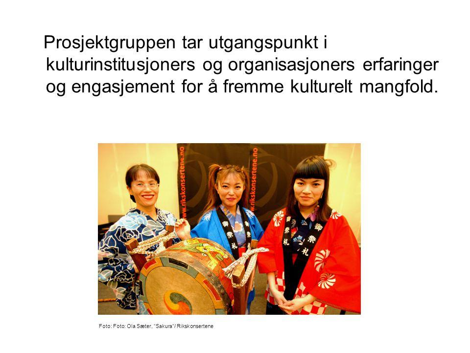 Prosjektgruppen tar utgangspunkt i kulturinstitusjoners og organisasjoners erfaringer og engasjement for å fremme kulturelt mangfold.