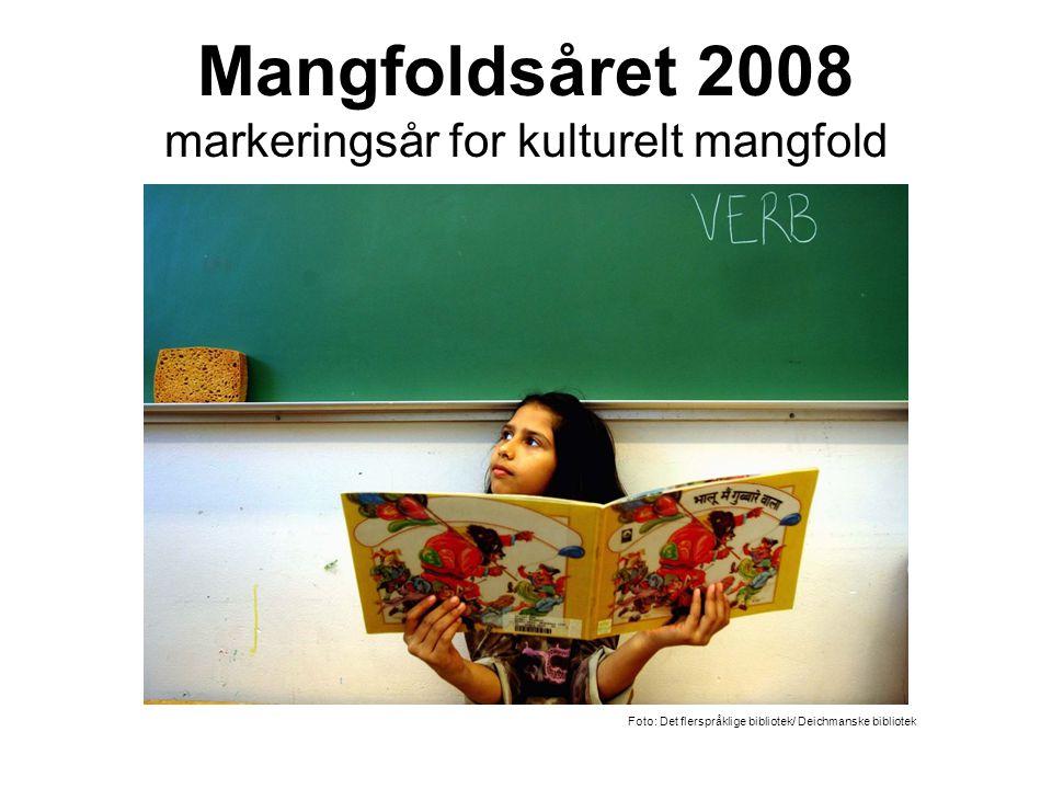 Mangfoldsåret 2008 markeringsår for kulturelt mangfold - Foto: Det flerspråklige bibliotek/ Deichmanske bibliotek