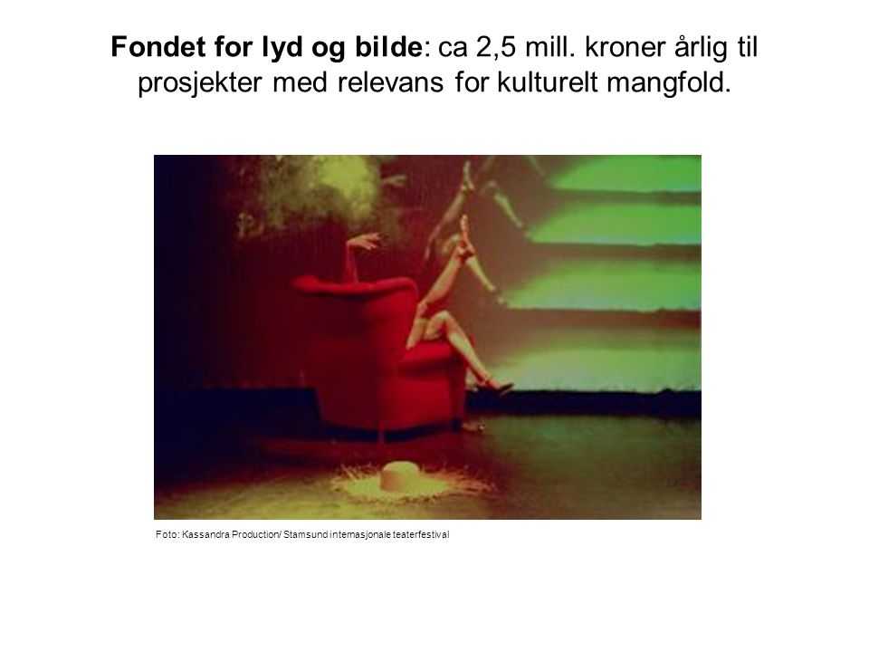 Norsk kulturråd: ca 20 mill.kroner årlig til ulike tiltak for kulturelt mangfold.