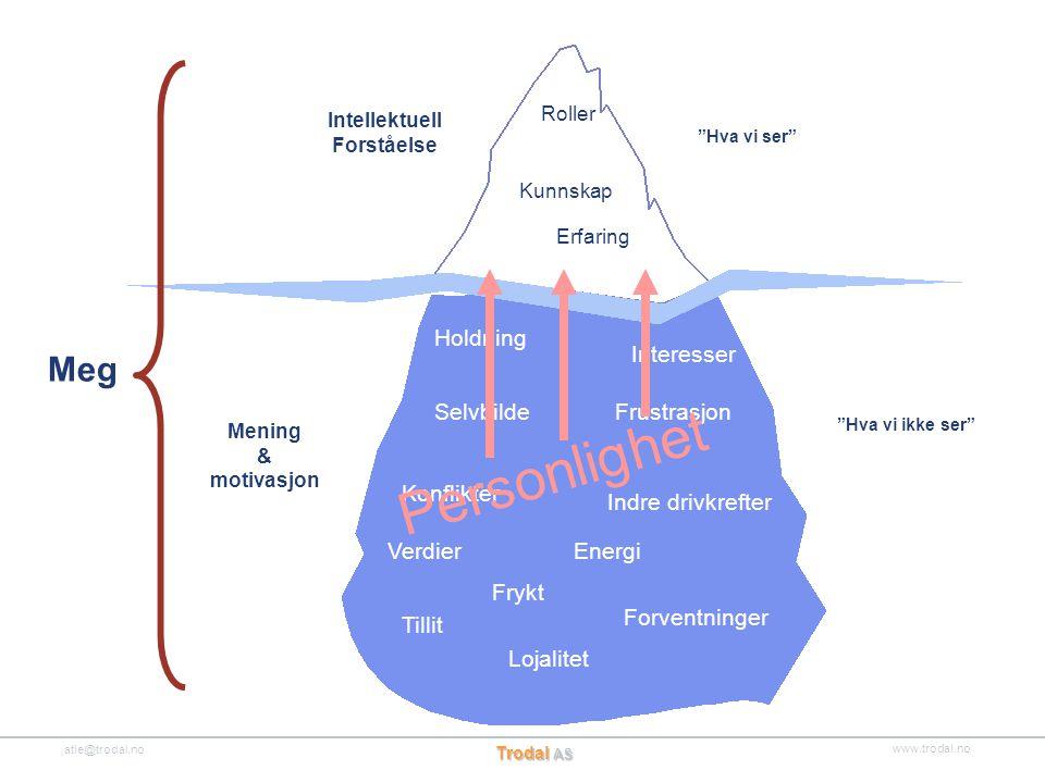 """www.trodal.no atle@trodal.no Trodal AS Kunnskap """"Hva vi ser"""" """"Hva vi ikke ser"""" Frykt Konflikter Frustrasjon Verdier Interesser Energi Selvbilde Lojali"""