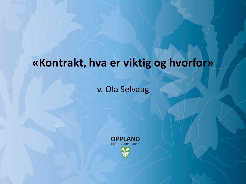 Mulighetenes Oppland «Kontrakt, hva er viktig og hvorfor» v. Ola Selvaag