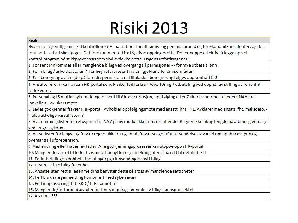 Risiki 2013