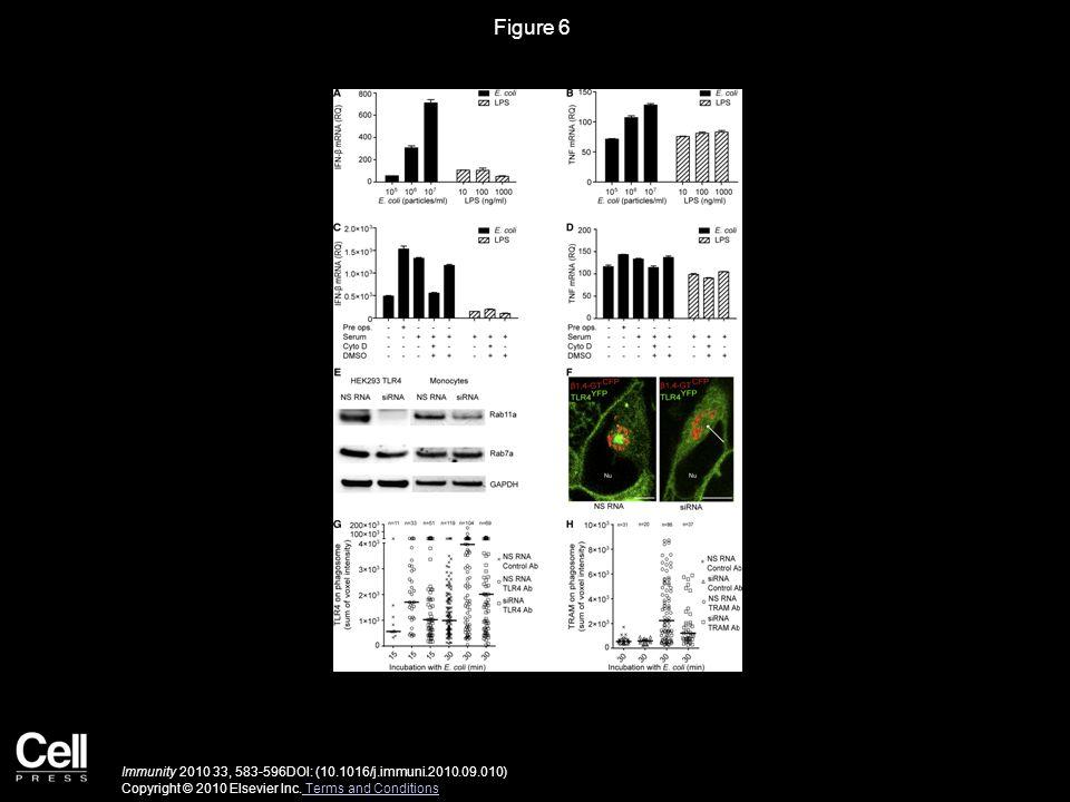 Figure 7 Immunity 2010 33, 583-596DOI: (10.1016/j.immuni.2010.09.010) Copyright © 2010 Elsevier Inc.