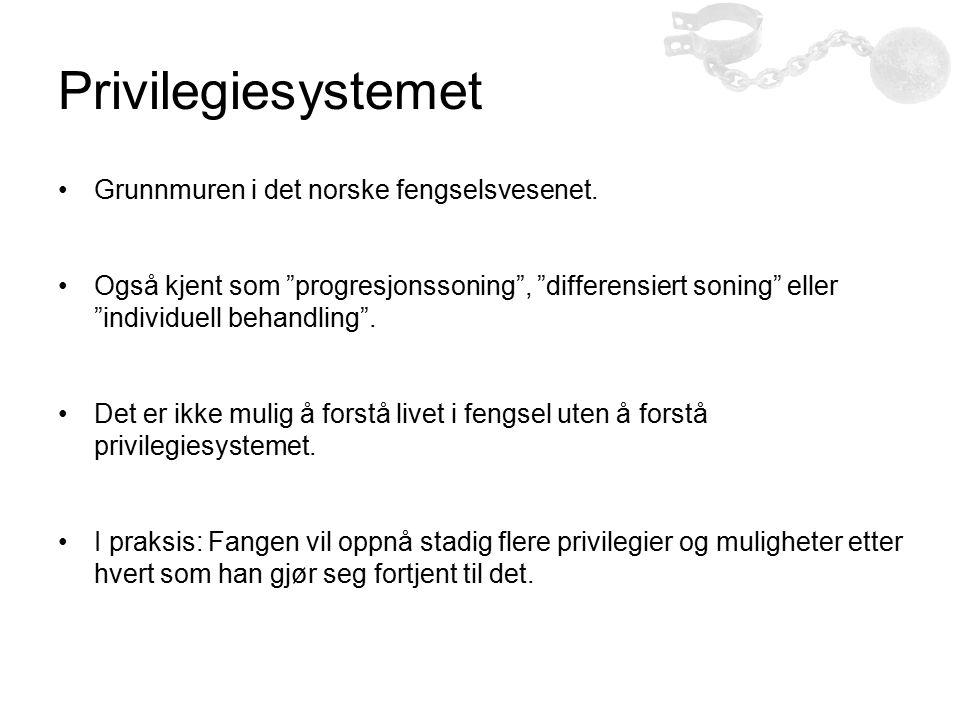 """Privilegiesystemet Grunnmuren i det norske fengselsvesenet. Også kjent som """"progresjonssoning"""", """"differensiert soning"""" eller """"individuell behandling""""."""