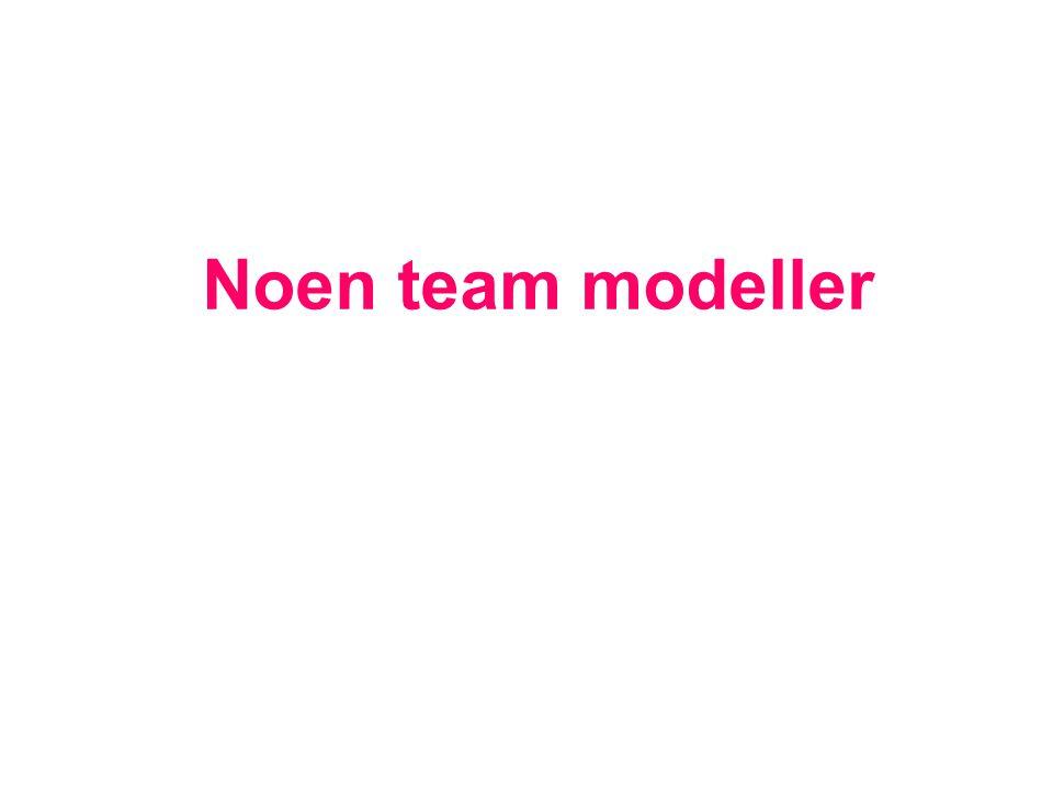 Noen team modeller