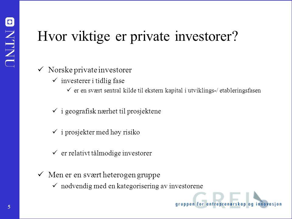 5 Hvor viktige er private investorer.