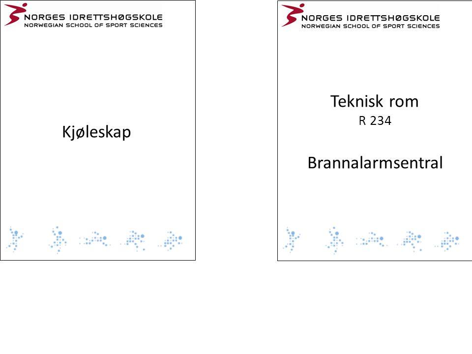 Teknisk rom R 234 Brannalarmsentral Kjøleskap