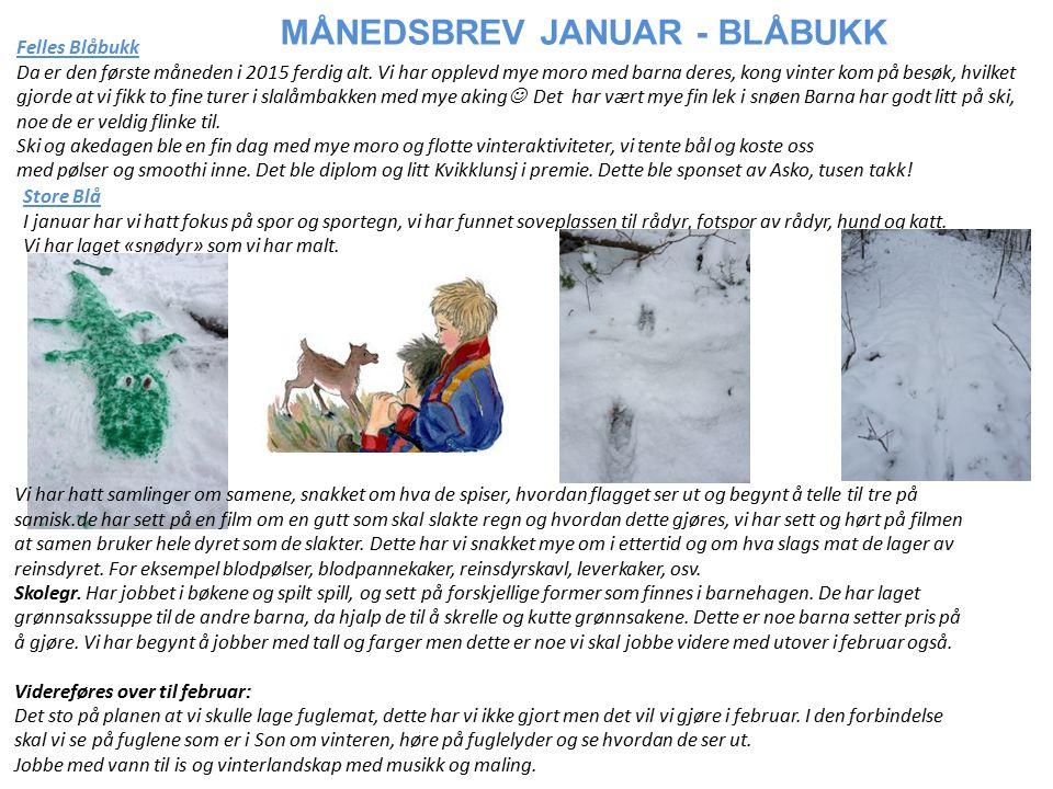Felles Blåbukk Da er den første måneden i 2015 ferdig alt.