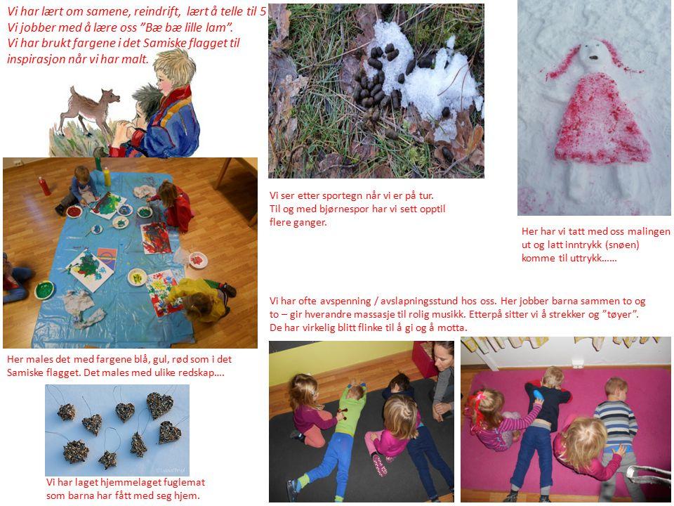 Vi har lært om samene, reindrift, lært å telle til 5 Vi jobber med å lære oss Bæ bæ lille lam .