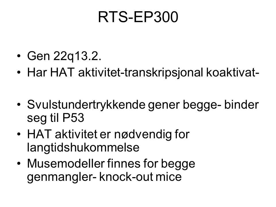 RTS-EP300 Gen 22q13.2. Har HAT aktivitet-transkripsjonal koaktivat- Svulstundertrykkende gener begge- binder seg til P53 HAT aktivitet er nødvendig fo