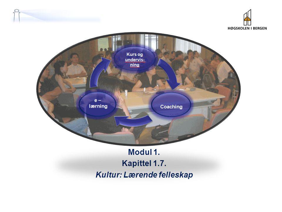 Modul 1 Modul 1. Kapittel 1.7. Kultur: Lærende felleskap