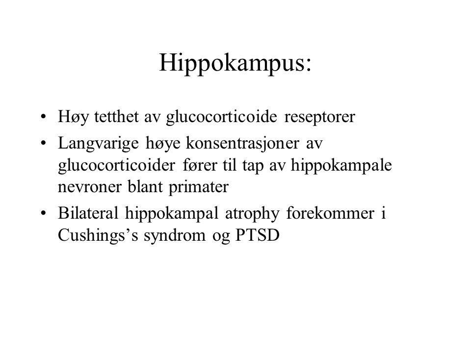Hippokampus: Høy tetthet av glucocorticoide reseptorer Langvarige høye konsentrasjoner av glucocorticoider fører til tap av hippokampale nevroner blan