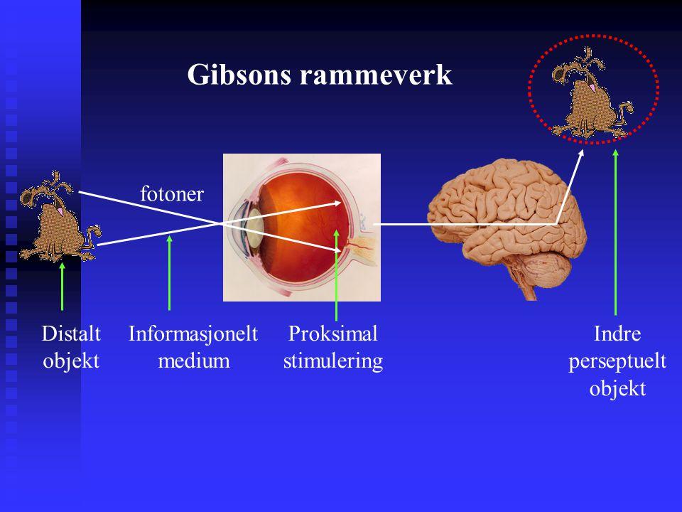 Gibsons rammeverk fotoner Distalt objekt Informasjonelt medium Proksimal stimulering Indre perseptuelt objekt