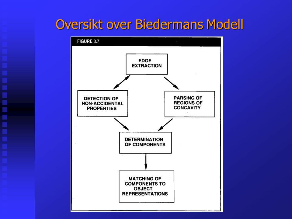 Oversikt over Biedermans Modell