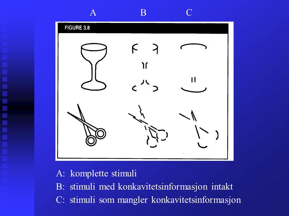 A: komplette stimuli B: stimuli med konkavitetsinformasjon intakt C: stimuli som mangler konkavitetsinformasjon A BC