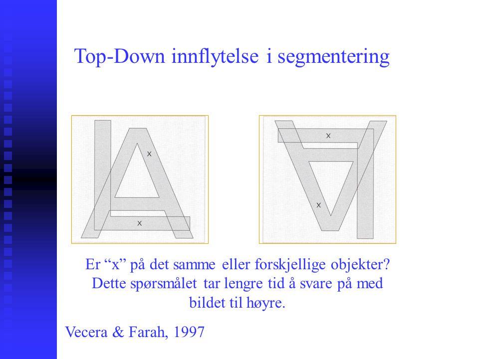 'Indirekte' persepsjon Top-down tilnærminger: Konstruktiv beskrivelse Top-down tilnærminger: Konstruktiv beskrivelse Sjefen: Hermann von Helmholtz (19