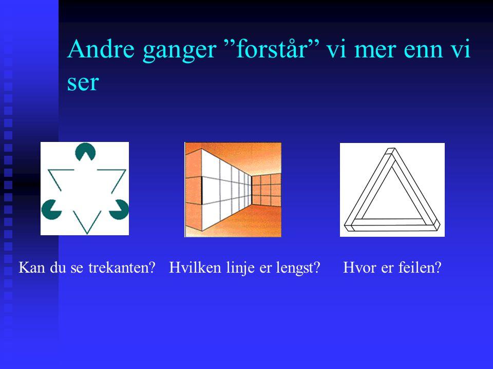 Andre ganger forstår vi mer enn vi ser Kan du se trekanten.