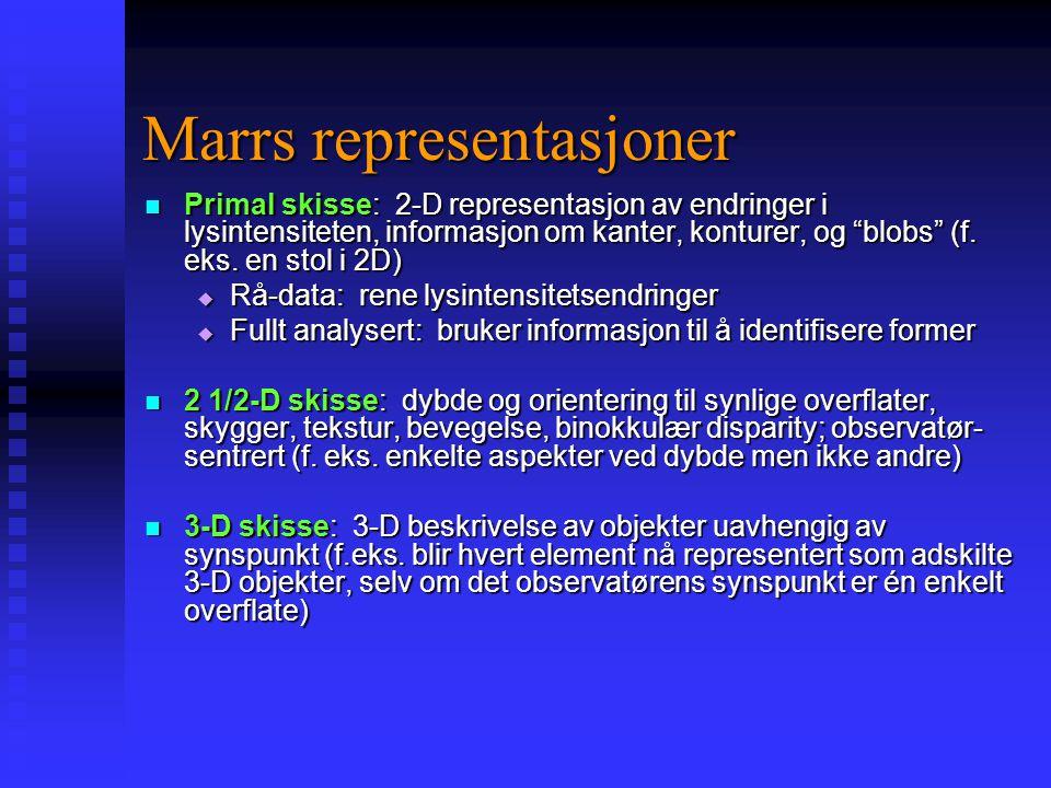 Marrs (1982) computation Marr viste hvordan en persepsjonsmodell kan spesifiseres i tilstrekkelig detalj til å kunne simuleres av en computer Marr vis
