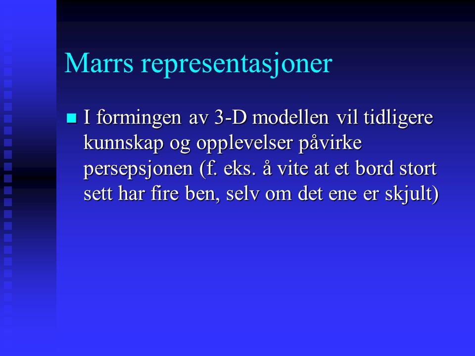 """Marrs representasjoner Primal skisse: 2-D representasjon av endringer i lysintensiteten, informasjon om kanter, konturer, og """"blobs"""" (f. eks. en stol"""