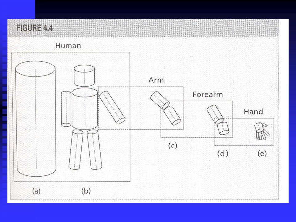 Marr & Nishihara (1978) Utvikling av 3-D skisse basert på prosessering av mer elementære form- primitiver (den basale primitive er en sylinder med en hovedakse) Utvikling av 3-D skisse basert på prosessering av mer elementære form- primitiver (den basale primitive er en sylinder med en hovedakse) Hierarkisk organisering av primitiver Hierarkisk organisering av primitiver Konkaviteter er viktige i å segmentere deler Konkaviteter er viktige i å segmentere deler