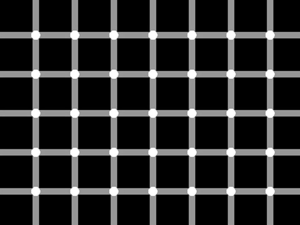 Hvor mange sorte prikker finnes i dette bildet?