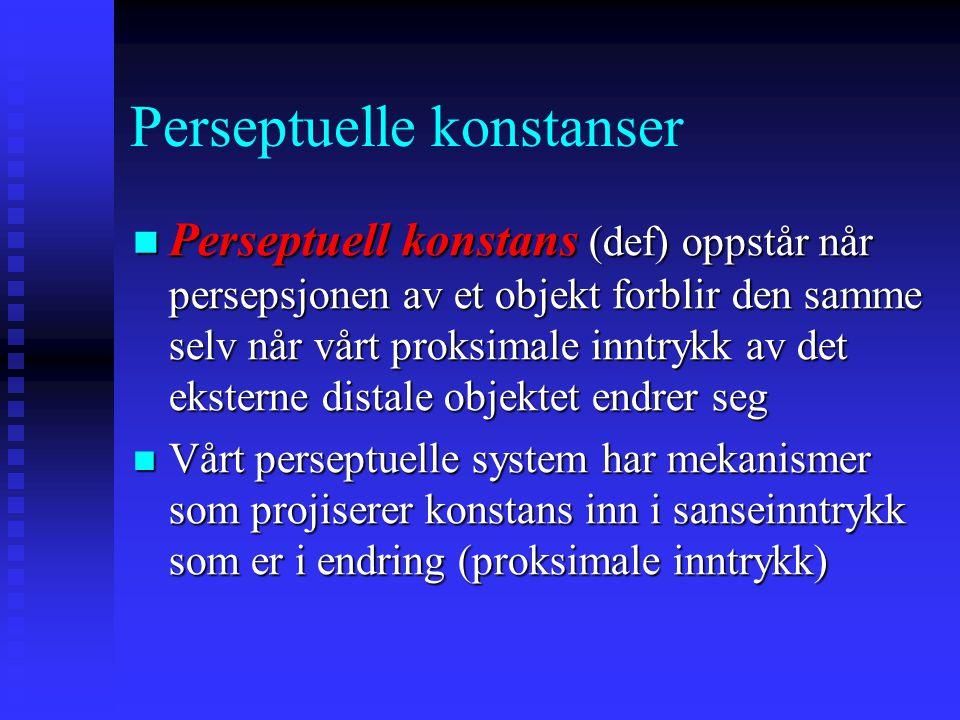 Perseptuelle konstanser Perseptuell konstans (def) oppstår når persepsjonen av et objekt forblir den samme selv når vårt proksimale inntrykk av det eksterne distale objektet endrer seg Perseptuell konstans (def) oppstår når persepsjonen av et objekt forblir den samme selv når vårt proksimale inntrykk av det eksterne distale objektet endrer seg Vårt perseptuelle system har mekanismer som projiserer konstans inn i sanseinntrykk som er i endring (proksimale inntrykk) Vårt perseptuelle system har mekanismer som projiserer konstans inn i sanseinntrykk som er i endring (proksimale inntrykk)
