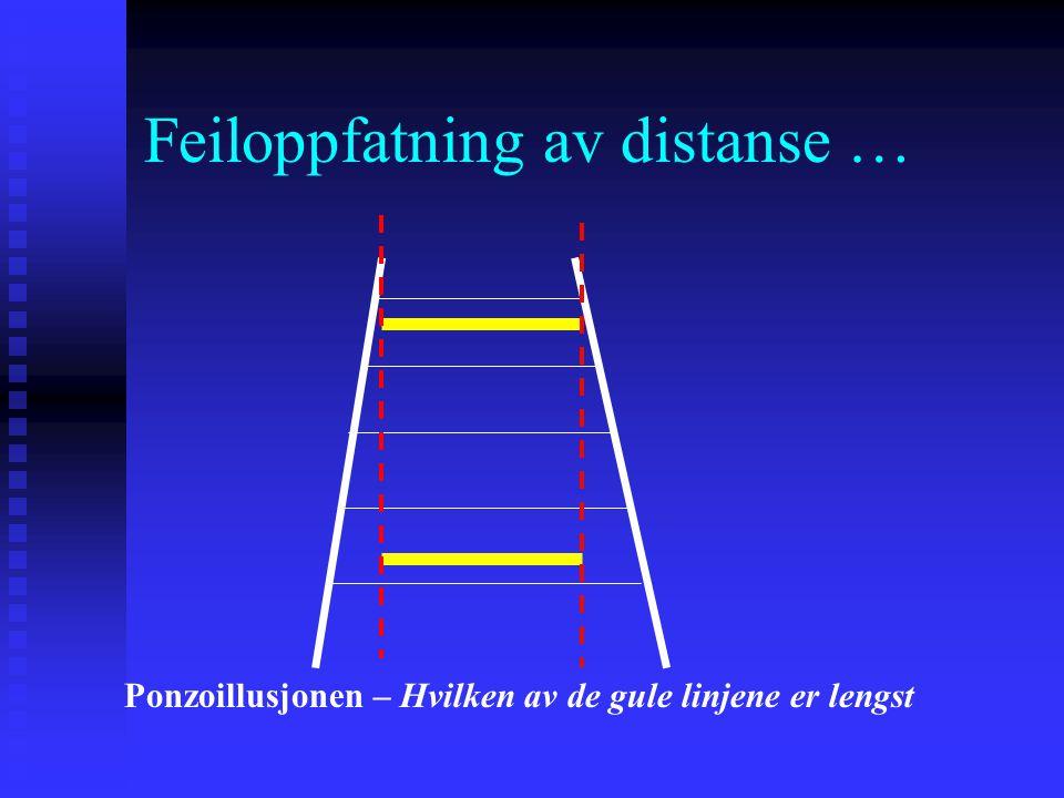 Feiloppfatning av distanse … Ponzoillusjonen – Hvilken av de gule linjene er lengst