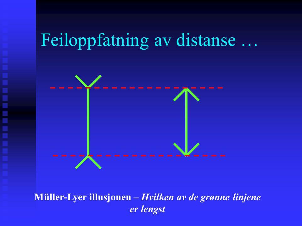 Feiloppfatning av distanse … Müller-Lyer illusjonen – Hvilken av de grønne linjene er lengst