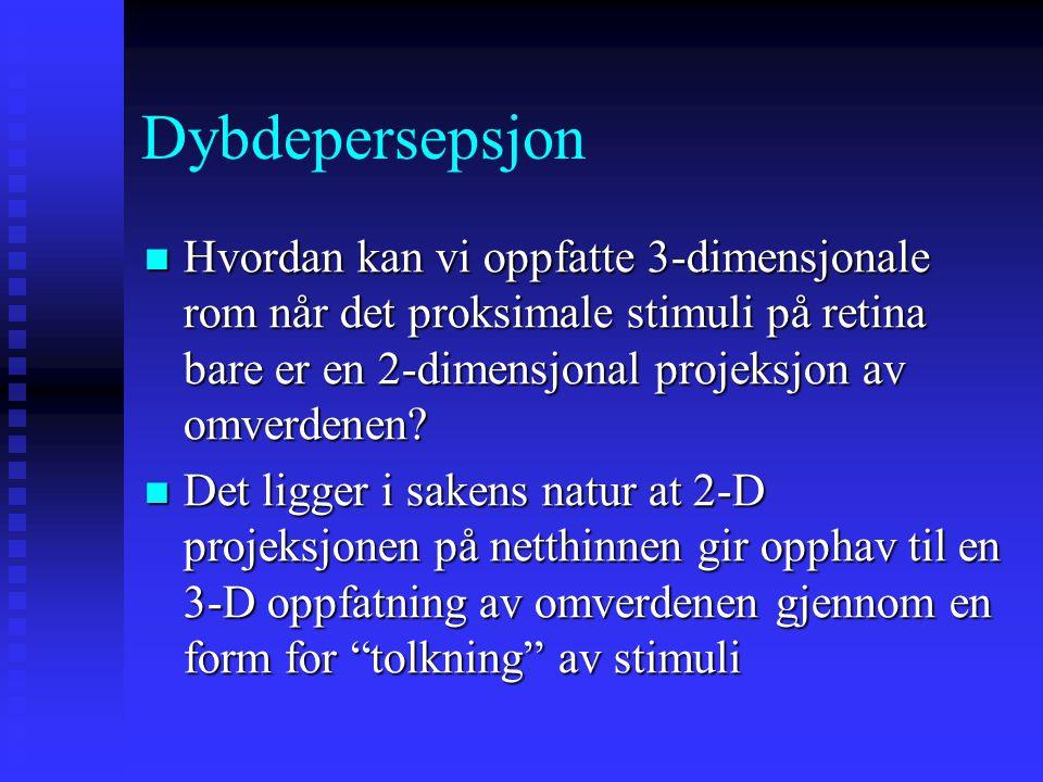 Dybdepersepsjon Hvordan kan vi oppfatte 3-dimensjonale rom når det proksimale stimuli på retina bare er en 2-dimensjonal projeksjon av omverdenen.