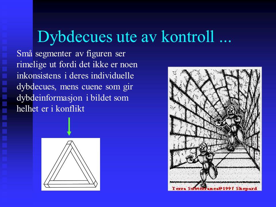 Dybdepersepsjon Hvordan kan vi oppfatte 3-dimensjonale rom når det proksimale stimuli på retina bare er en 2-dimensjonal projeksjon av omverdenen? Hvo