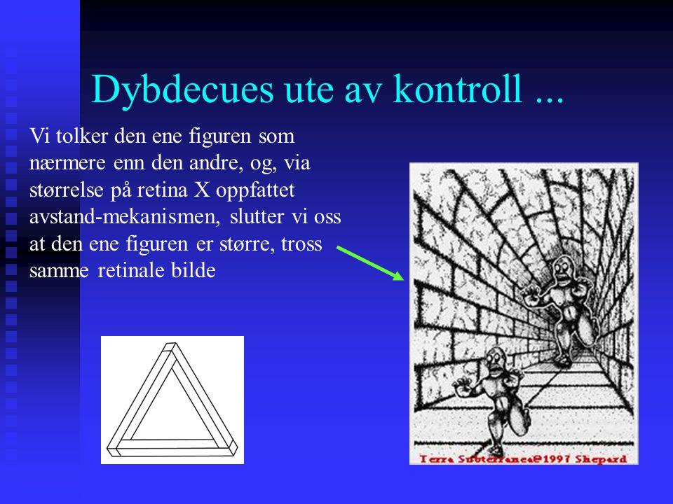 Dybdecues ute av kontroll... Små segmenter av figuren ser rimelige ut fordi det ikke er noen inkonsistens i deres individuelle dybdecues, mens cuene s