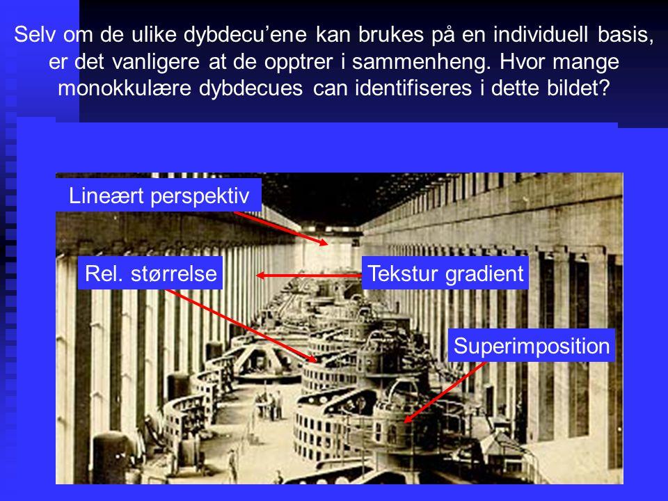 Selv om de ulike dybdecu'ene kan brukes på en individuell basis, er det vanligere at de opptrer i sammenheng.