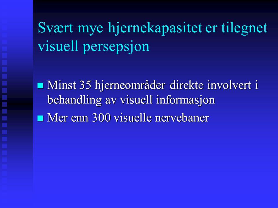 Svært mye hjernekapasitet er tilegnet visuell persepsjon Minst 35 hjerneområder direkte involvert i behandling av visuell informasjon Minst 35 hjerneområder direkte involvert i behandling av visuell informasjon Mer enn 300 visuelle nervebaner Mer enn 300 visuelle nervebaner