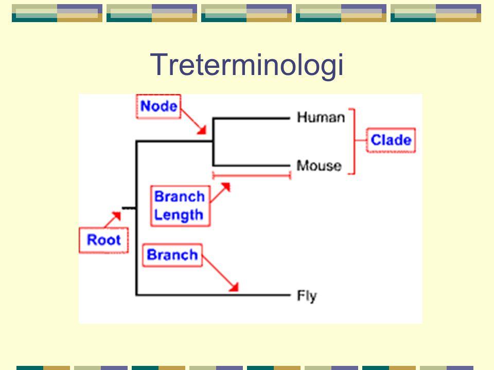 Treterminologi