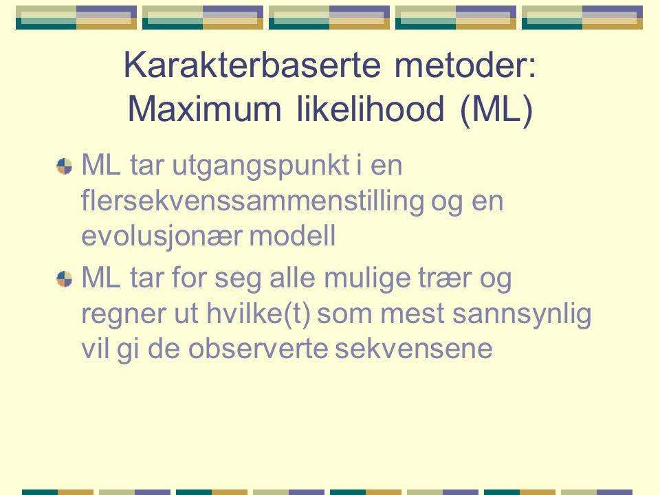 Karakterbaserte metoder: Maximum likelihood (ML) ML tar utgangspunkt i en flersekvenssammenstilling og en evolusjonær modell ML tar for seg alle mulige trær og regner ut hvilke(t) som mest sannsynlig vil gi de observerte sekvensene