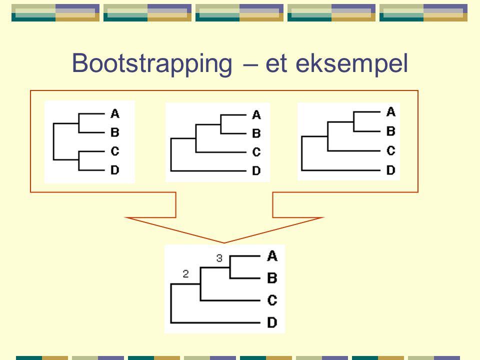 Bootstrapping – et eksempel