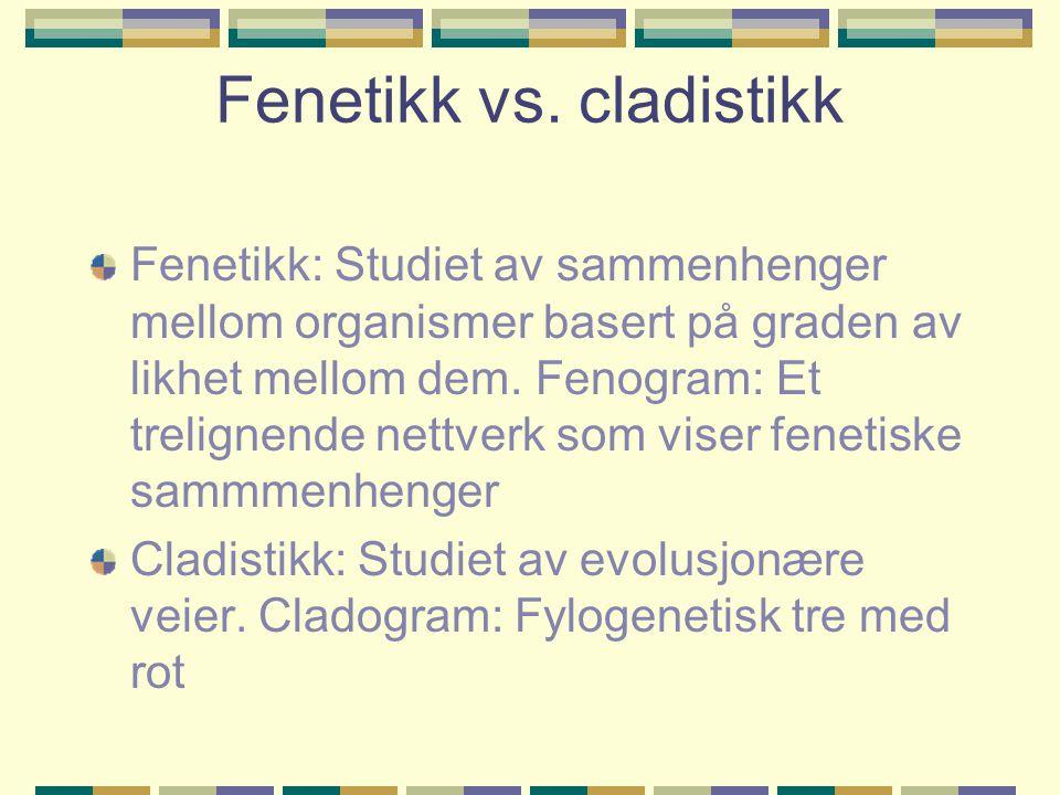 Fenetikk vs.