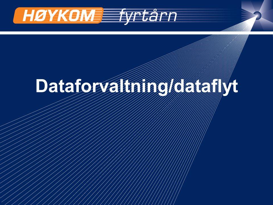 8 Dataforvaltning og dataflyt - et samspill