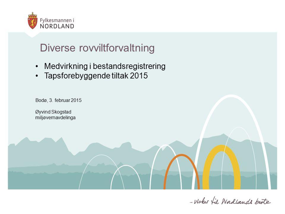 Diverse rovviltforvaltning Medvirkning i bestandsregistrering Tapsforebyggende tiltak 2015 Bodø, 3.