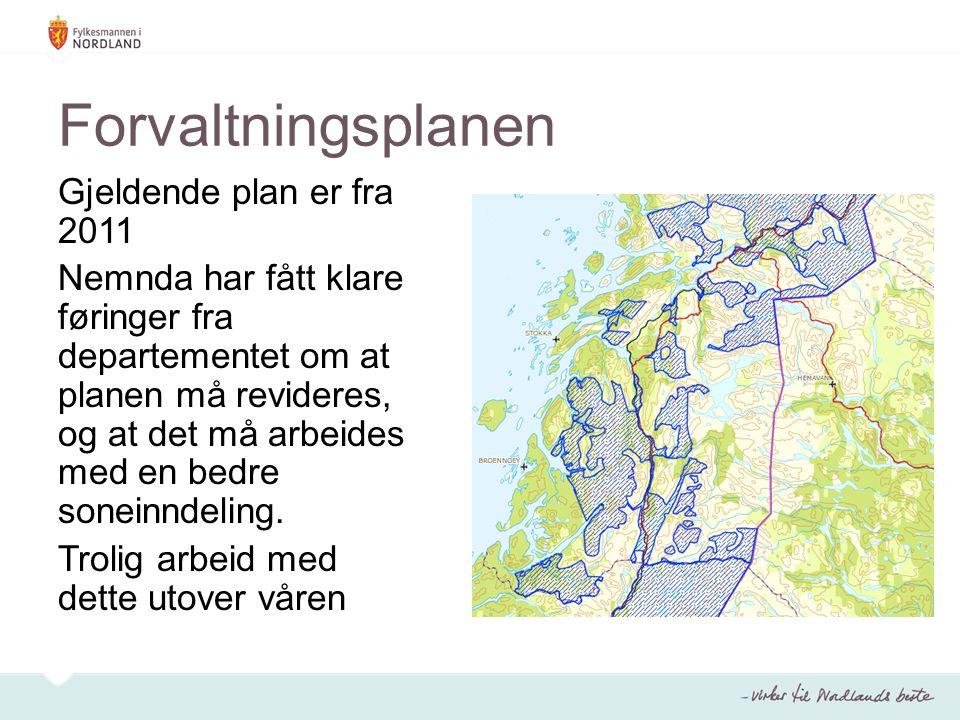 Forvaltningsplanen Gjeldende plan er fra 2011 Nemnda har fått klare føringer fra departementet om at planen må revideres, og at det må arbeides med en bedre soneinndeling.