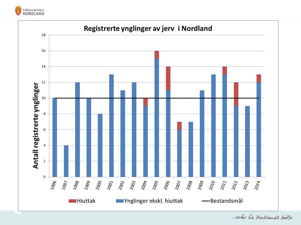 Bestandsmål er 1 årlig yngling.Det er ikke påvist yngling av bjørn i Nordland i nyere tid.