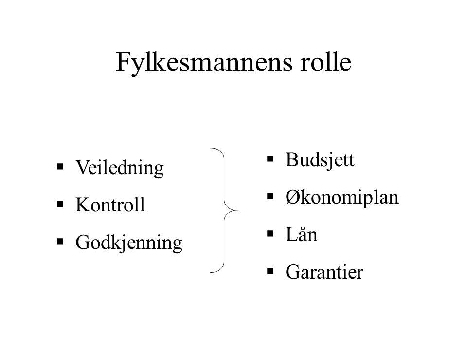 Fylkesmannens rolle  Veiledning  Kontroll  Godkjenning  Budsjett  Økonomiplan  Lån  Garantier