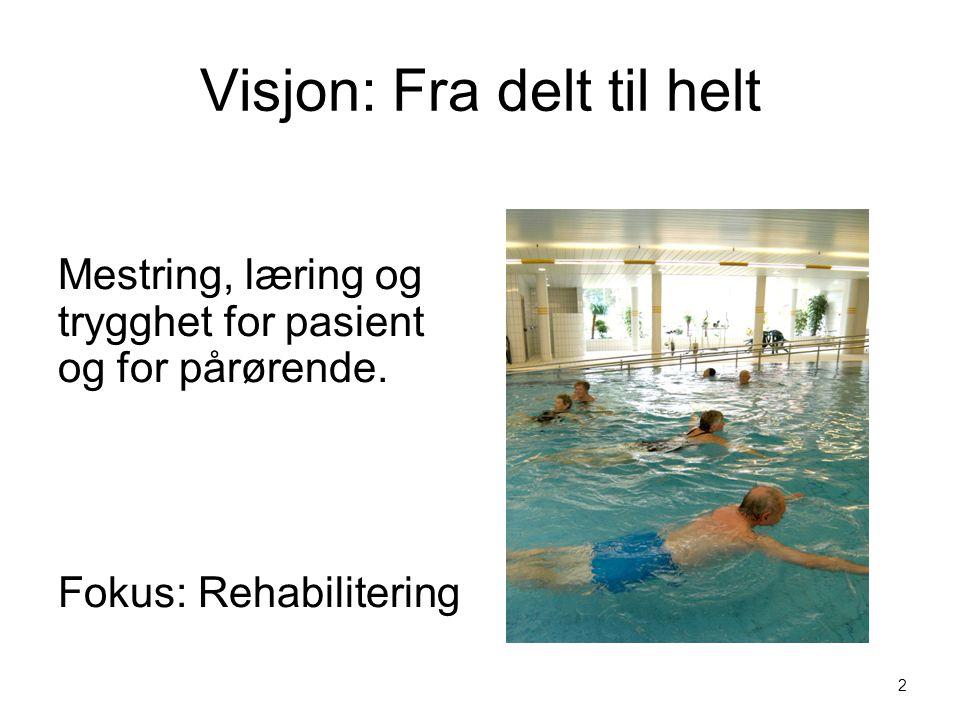 Visjon: Fra delt til helt Mestring, læring og trygghet for pasient og for pårørende.