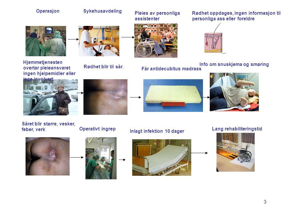 Innhold i Vestfoldmodellen Rehabilitering og etterbehandling Fokus på pasient og pårørende Brukerforankring og medvirkning Læring og mestringsmetodikk Samhandling om den helhetlige behandlingslinje- tette hullene mellom nivåene 14