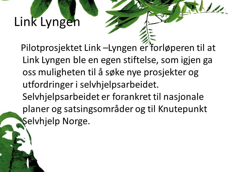 Link Lyngen Pilotprosjektet Link –Lyngen er forløperen til at Link Lyngen ble en egen stiftelse, som igjen ga oss muligheten til å søke nye prosjekter og utfordringer i selvhjelpsarbeidet.