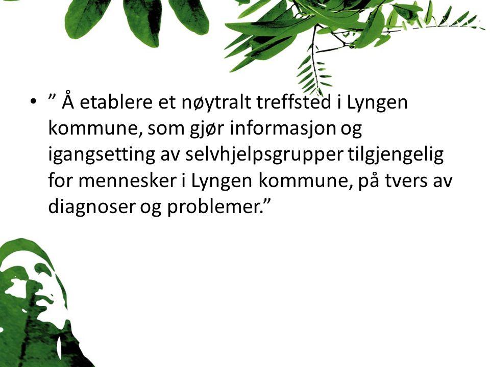 Å etablere et nøytralt treffsted i Lyngen kommune, som gjør informasjon og igangsetting av selvhjelpsgrupper tilgjengelig for mennesker i Lyngen kommune, på tvers av diagnoser og problemer.